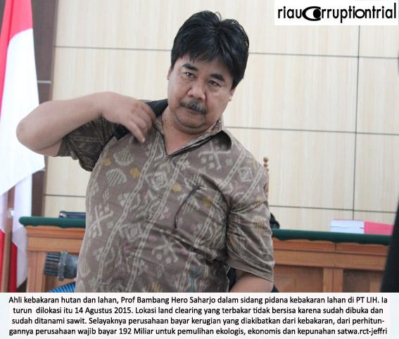 Bambang Hero