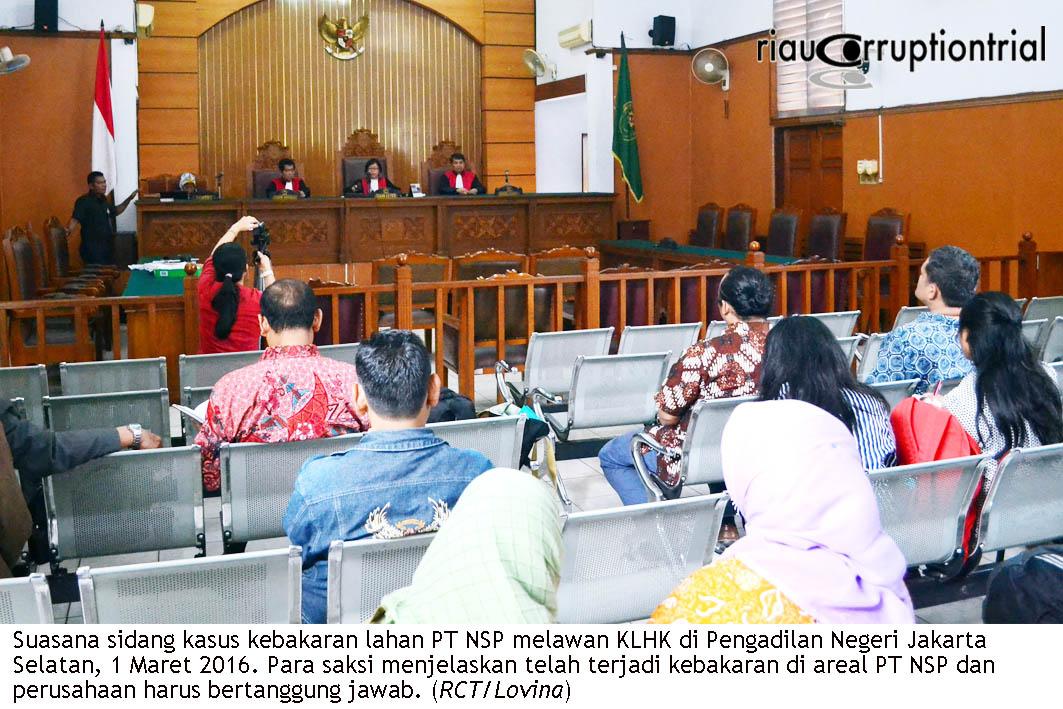 sidang nsp3